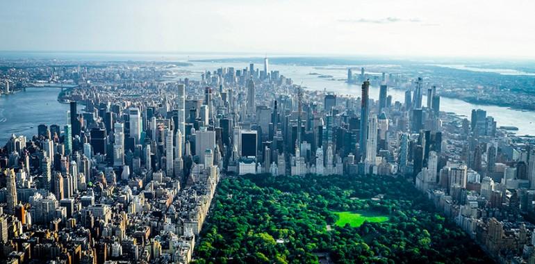 ecole lsi new york voyage langue