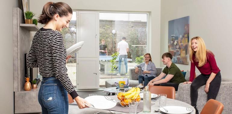 appartement partage dublin voyage langue
