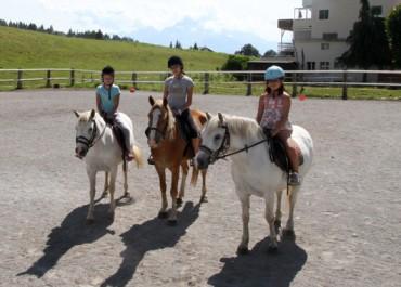 1 semaine d'anglais Junior 8 17 ans + Équitation