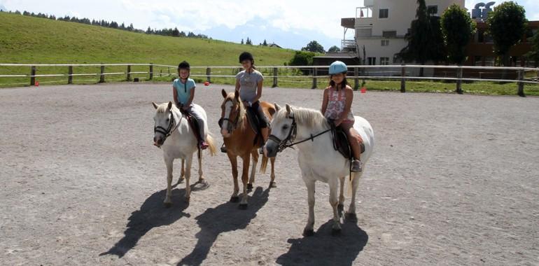 sejour linguistique equitation voyage langue suisse